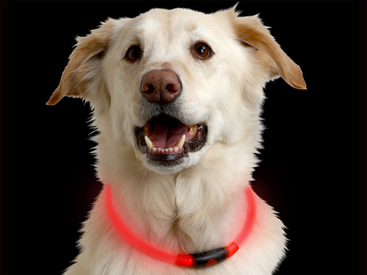 Nite Ize NiteHowl LED Safety Necklace for Pets - Cut to Fit 12 to 27-Inch - Orange, Blue, Red, Tie Dye Pink, or Green - L1154 Batteries Included